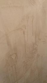 Venetian Plaster Repair - Plaster Forum - Drywall Talk