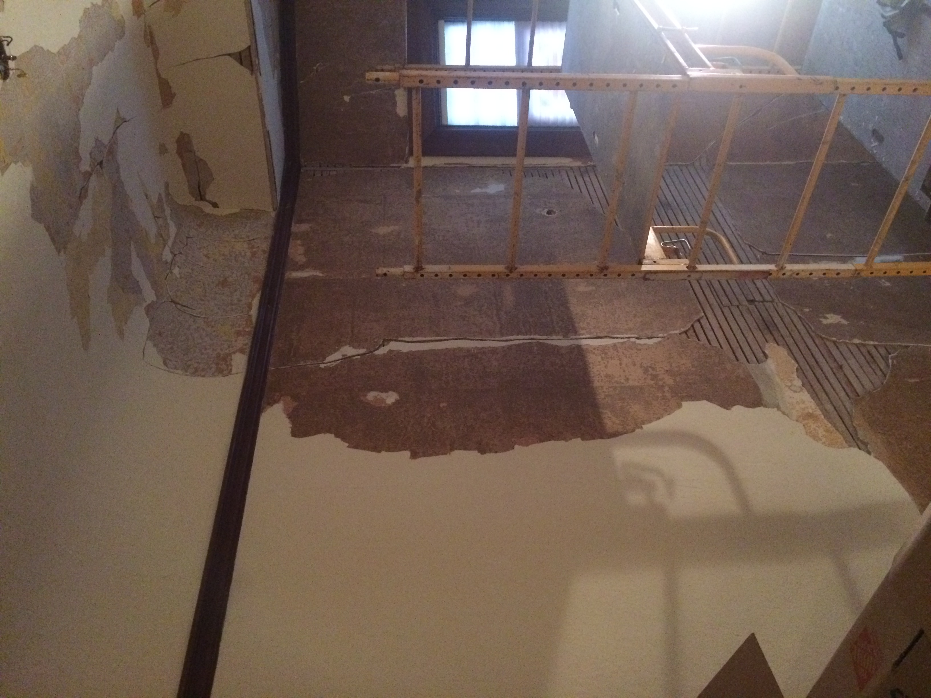 HELP! The entire skim on wallpaper fell off - 100 year old plaster-img_6319.jpg